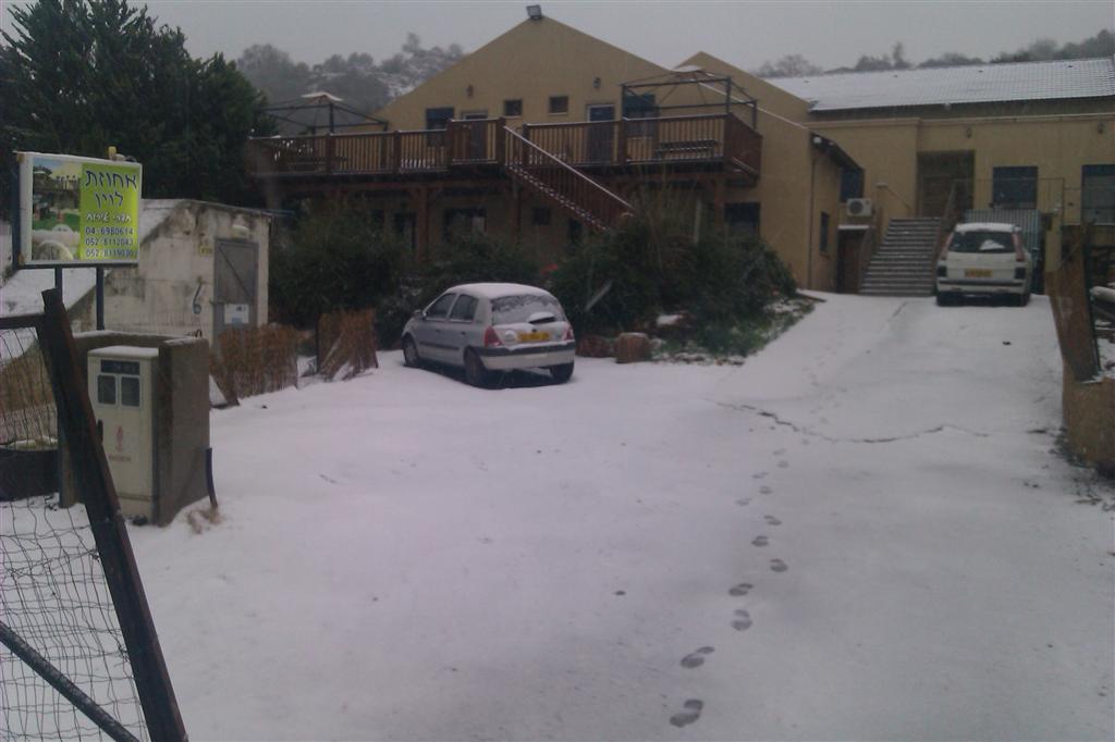 שלג 2013