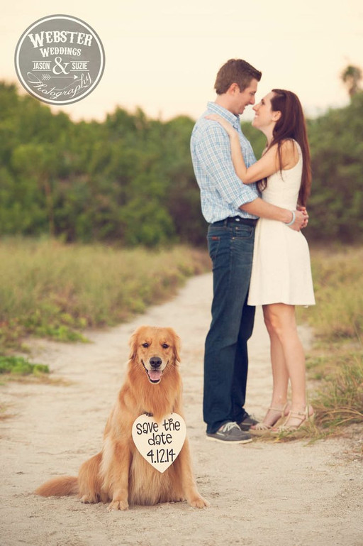 save the date & doggy. Dogs at weddings blog 008