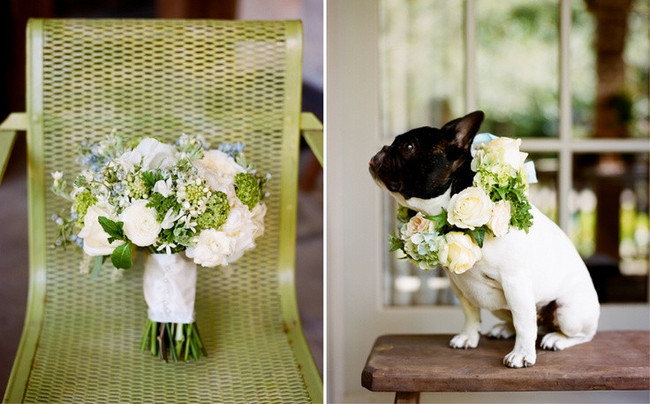 Bouquet and dog collar corsage. Dogs at weddings blog 008