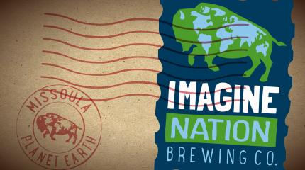 Imagine Nation Link Logo