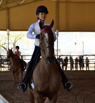 academy rider on horse at show