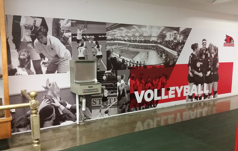 semo volleyball wall graphic