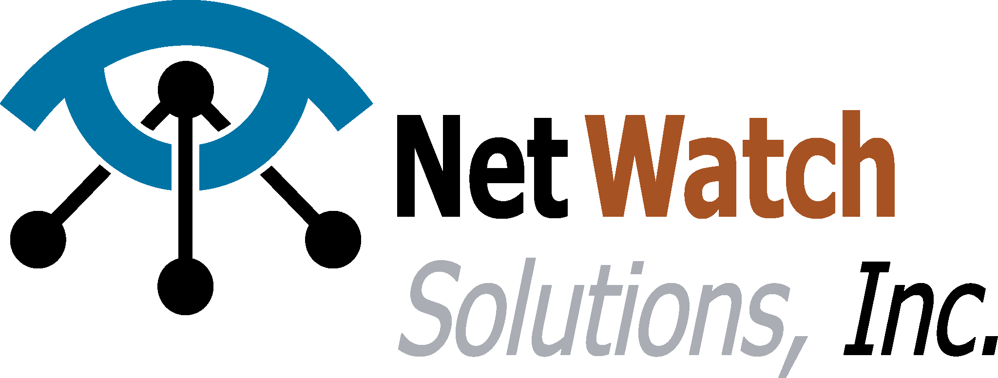 Netwatch Solutions Inc Home Page