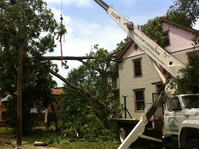 Emergency Tree Service - Green Future Construction