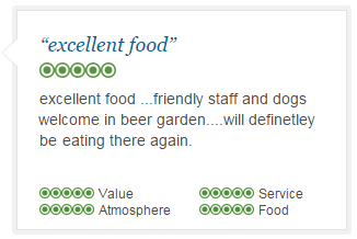 Excellent Food Reviews