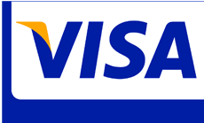 visa at ct website company