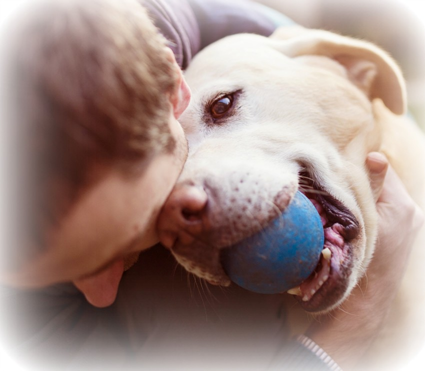 Man hugging his Golden Retriever dog who is holding a blue ball in his mouth.