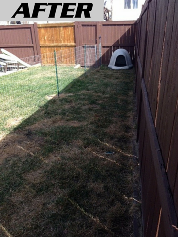 Yard that has been completely cleared of all dog poop by Poooh Busters