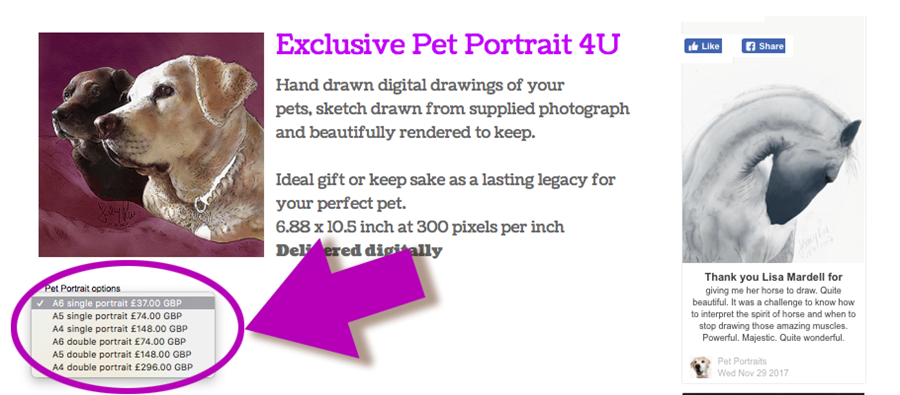 Creative Review: Drawing on your support for pet portraits
