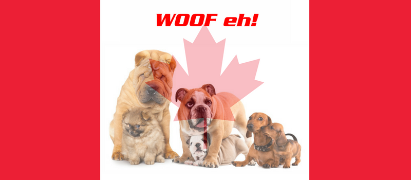 canadian flag with a group of dogs in the middle and the maple leaf superimposed